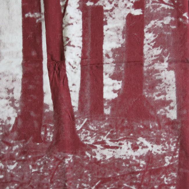 Grautex beech trees photo silkscreen fabric art